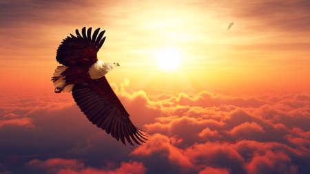 aguila real: Águila de pescados africana que vuela arriba sobre las nubes con la salida del sol obra digital