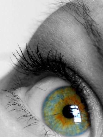 cilia: Eye