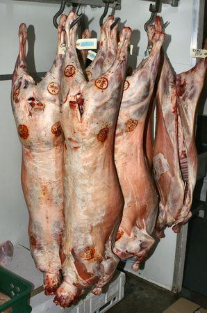 carcass: Lamb carcasses hanging in refridgerater Stock Photo