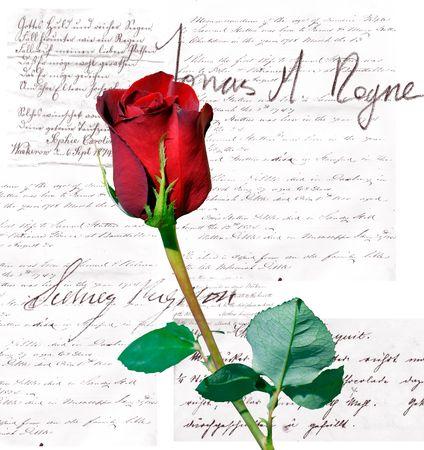 prose: Rose and prose
