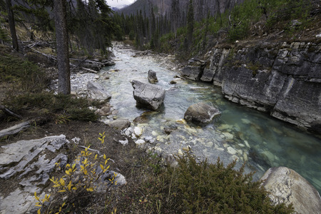brilliant colors: The brilliant colors of the river and rocks in Marble Canyon, Kootenay National Park, Canada.