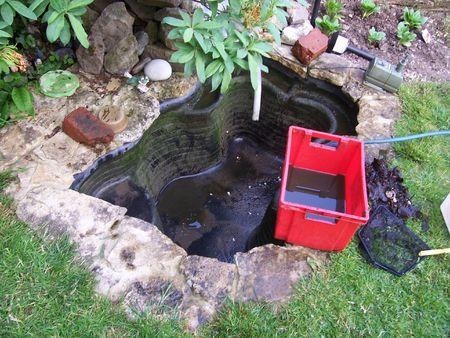 bassin jardin: l'�tang de jardin est vide, et en cours de nettoyage