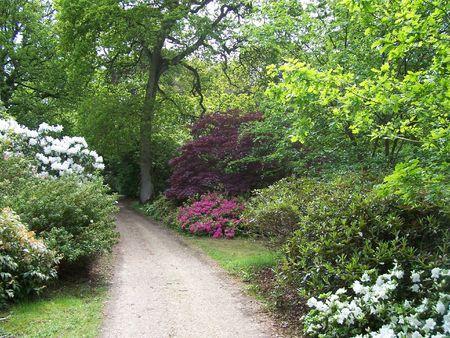 exbury: garden walk at Exbury Gardens (UK) Stock Photo