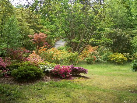 garden on display at Exbury Gardens, with a road  path in the background. (UK)