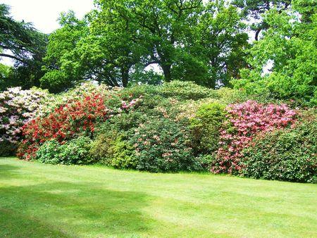exbury: garden on display at Exbury Gardens (UK) Stock Photo