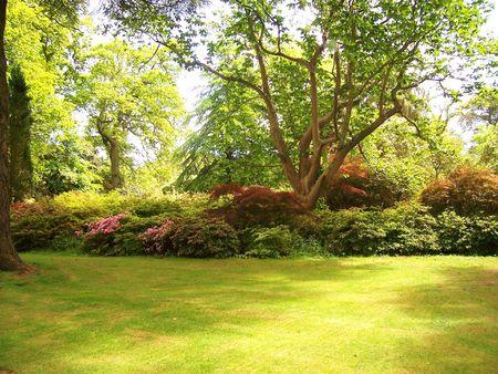 garden on display at Exbury Gardens (UK) Stock Photo