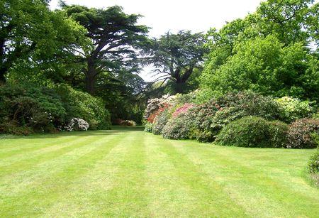 exbury: garden at exbury gardens (UK)
