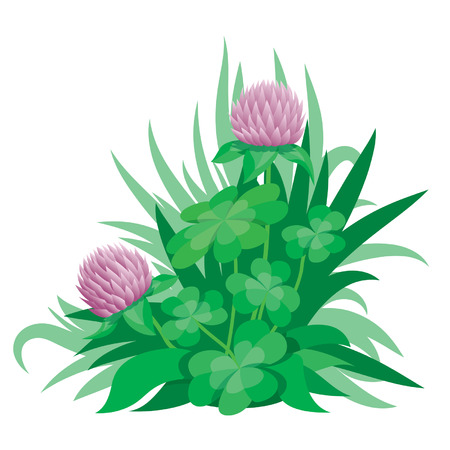 Clover ornament 2, vector Vector