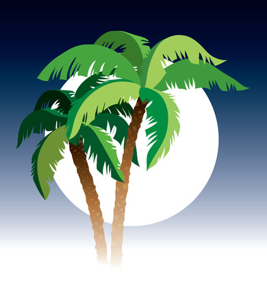 Palm trees, sky and moon in the background Vector