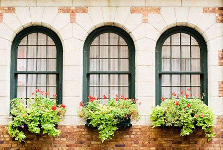 plaster of paris: 3 Frontenacs castle windows with flower boxes