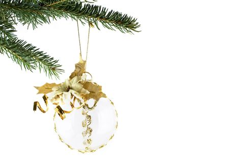 Gold xmas ball hanging on fir tree twig isolated on white background photo