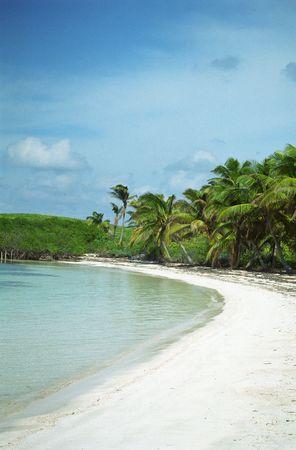 bird sanctuary: An empty beach on Isla Contoy, a bird sanctuary off the Yucatan coast of Mexico.