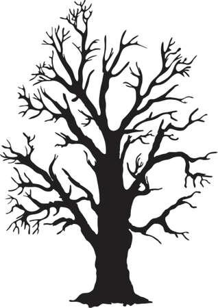boreal: oak silhouette