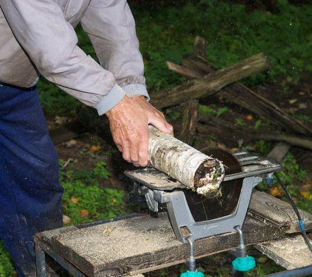 Saws a birch log photo