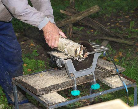 Saws a birch log Stock Photo - 3550003