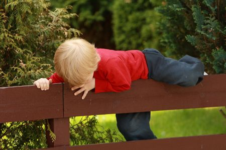 pasture fence: Little Boy Climbing a Fence