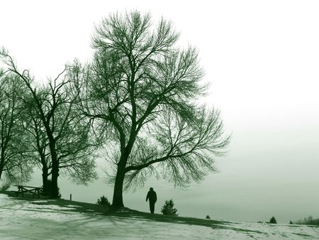 man walking in the park, winter Stock Photo