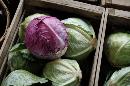boxes of purple and green cabbage at farmers market