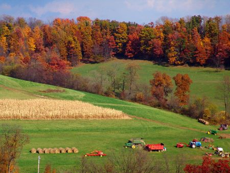 farmland landscape with truck tractors and hay bales photo