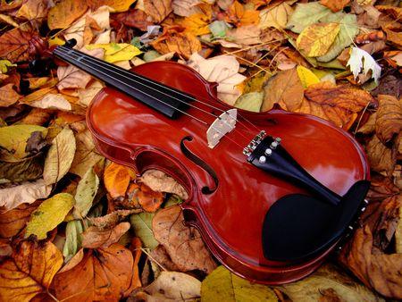 violin in the leaves