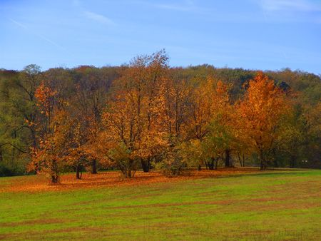 autumn landscape Stock Photo - 339505