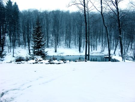 winter snowscene with pond snow and trees Stock Photo - 339476