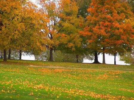 autumn landscape on golf course - trees Stock Photo