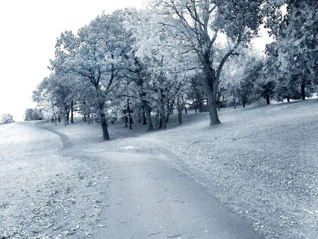 infrared: path on golf course - faux infrared Stock Photo
