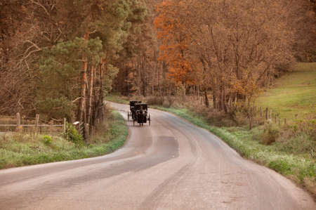 amish buggy: Amish buggy coming down country road in Ohio