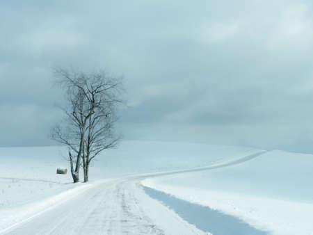 minimalistic: Minimalistic beautiful snow scene with road