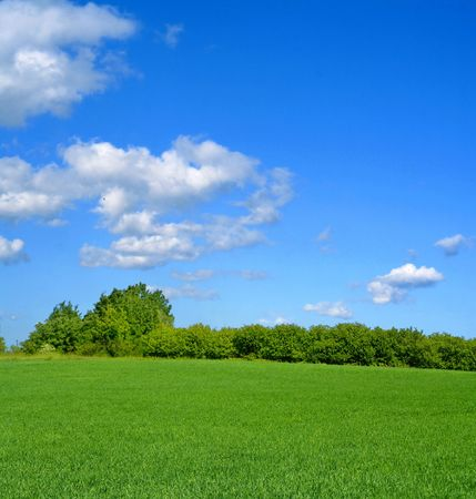 cumulus: idyllic summer landscape with cumulus clouds Stock Photo