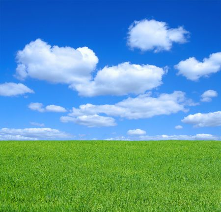 thickets: empty summer meadow against summrer sky with cumulus clouds Stock Photo