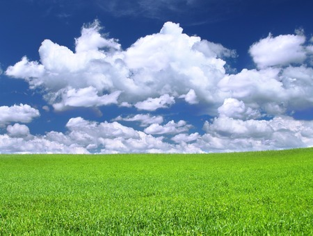 meadow against summrer sky with cumulus clouds Stock Photo - 1374210
