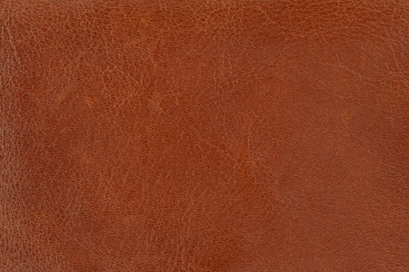 close-up of brown leather texture Stock Photo - 1519299