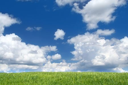 field with cumulus clouds, focus set in foreground