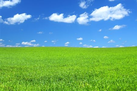beautiful vivid green summer field with a few cumulus clouds