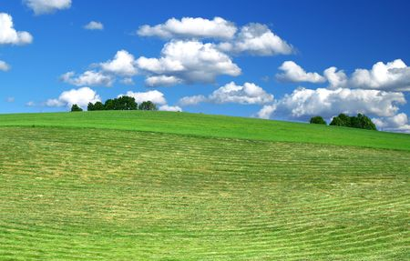 agruculture: freshly mowed lawn, beautiful cumulus clouds in background Stock Photo