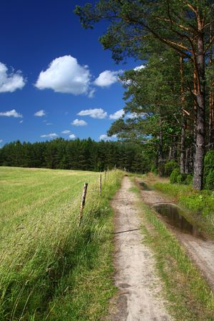 picturesque country road and field, cumulus clouds in background photo