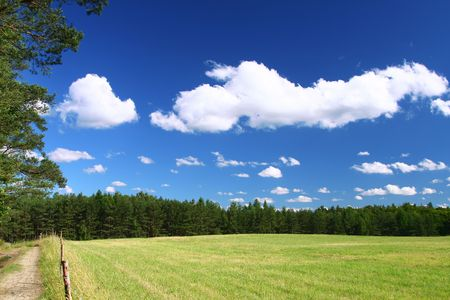 picturesque country road and field, cumulus clouds in background Stock Photo - 3258616