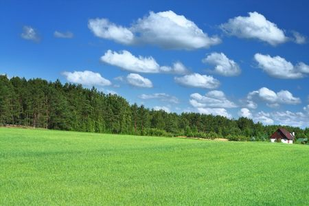 little house in grass field, cumulus clouds above photo