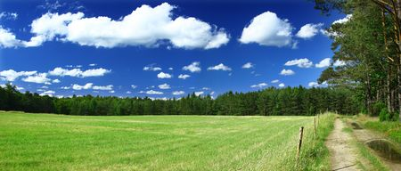 panoramic view on grass field, forest and a path Stock Photo