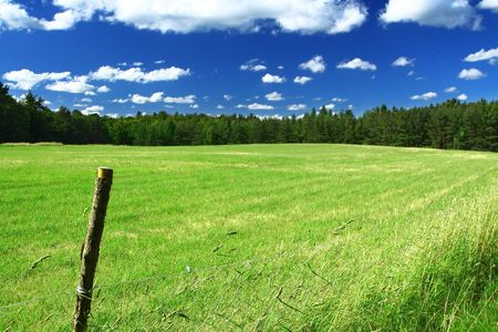 picturesque country road and field, cumulus clouds in background, focus set in foreground Stock Photo - 3296047