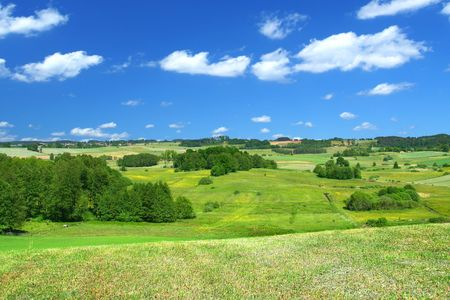 filed: summer landscape with cumulus clouds, focus set in foreground