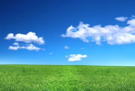 view of peaceful grassland, blue sky above, focus set in foreground Stock Photo - 3516220