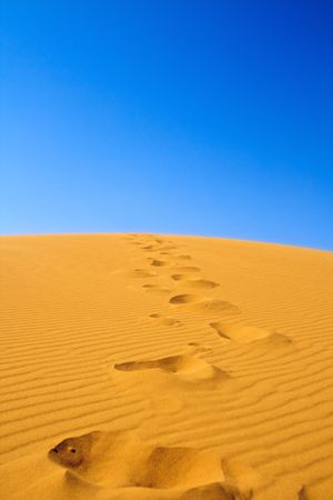 footsteps on sand dunes, cloudless sky in background Stock Photo - 5498678