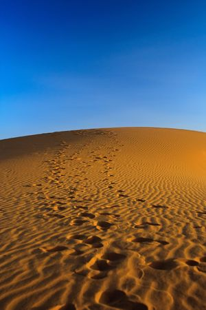 sunset over sand dune, focus set on the top of a hill Stock Photo - 5498680