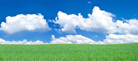 panoramic view of blissful grassland, blue sky above  photo