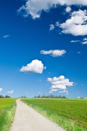 picturesque country road and cumulus clouds Stock Photo - 7345755