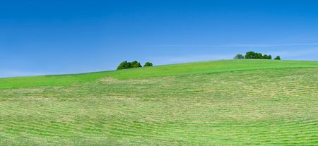 agruculture: freshly mowed lawn, beautiful cloudless sky in background Stock Photo