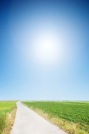 country road with cloudless sunny sky  Stock Photo - 7451920
